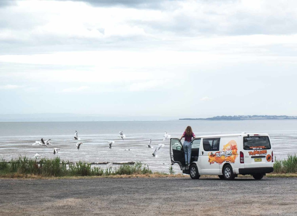 Chubby Campervan Hire New Zealand